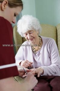 a-1 home care elder care encino